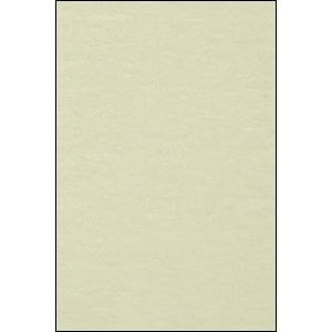 Přírodní karton pro digitální tisk,bílý 220 g, A4