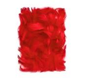 Dekorační peříčka, 5-12cm 10g, červená