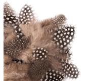 Dekorační peříčka křepelčí, 5-12cm 5g